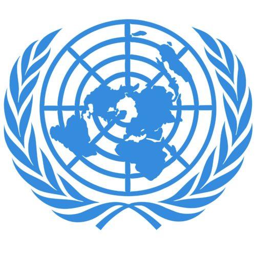 Les labels des projets de compensation carbone de l'ONU