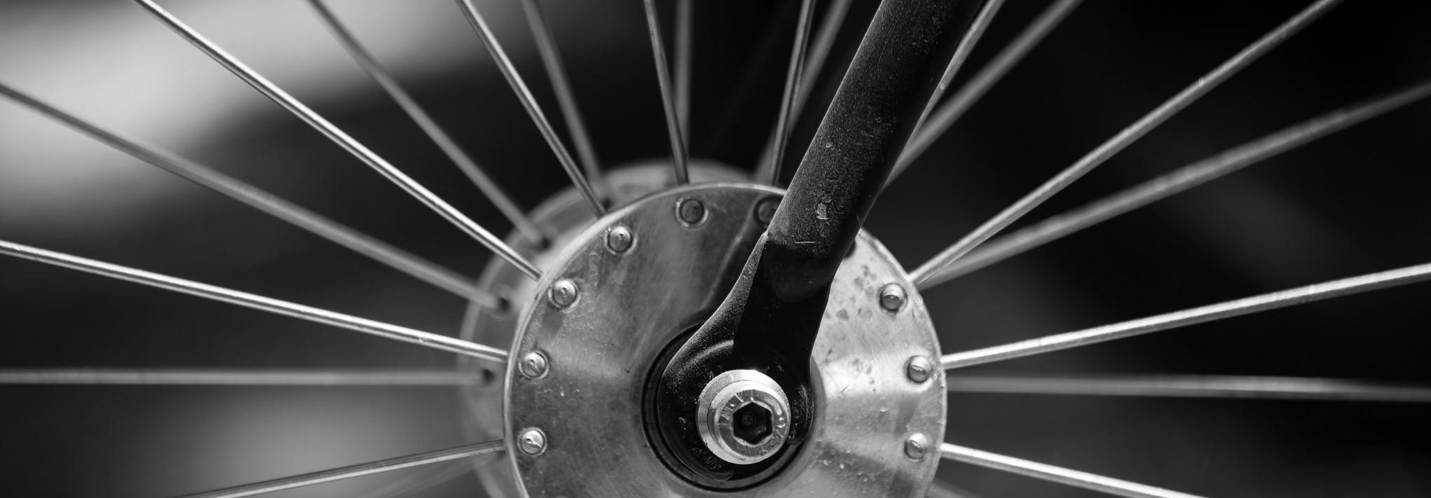 Le retour du vélo : une solution écologique