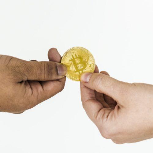 Top 5 des crypto-monnaies crées en faveur du développement durable