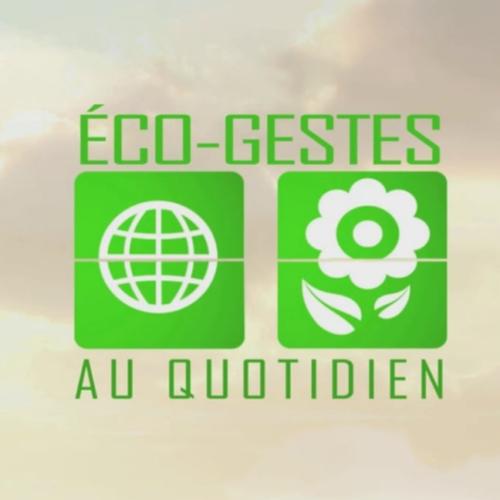 Les gestes du quotidien pour préserver l'environnement